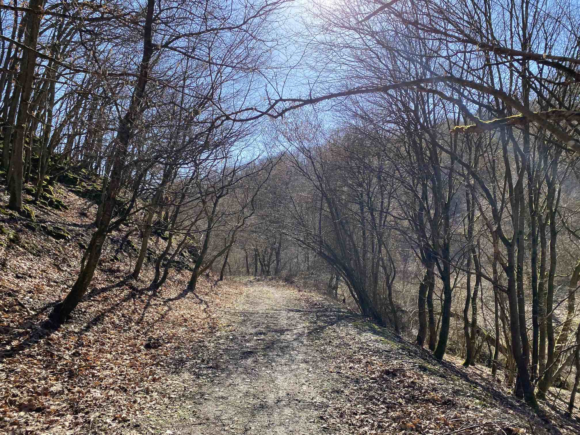 Am Ranselbach entlang
