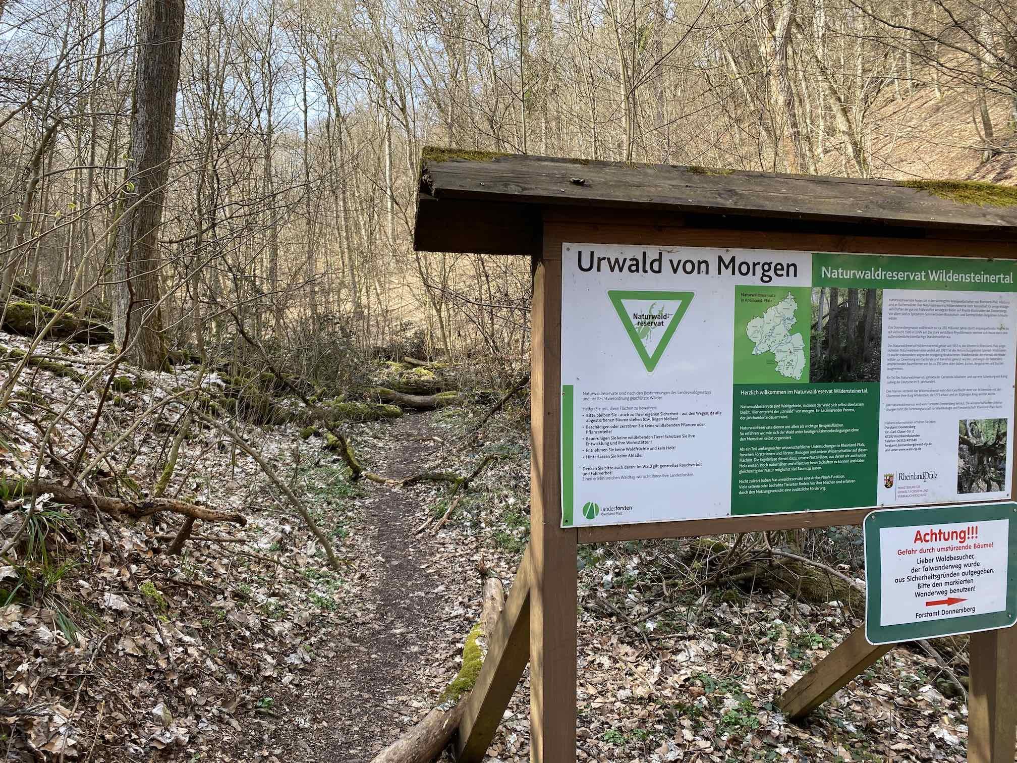Urwald-Lehrpfad